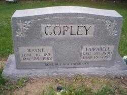 Wayne Copley