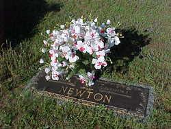 Mary Elizabeth <I>Johnson</I> Newton