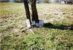 Eubanks Family Cemetery