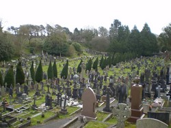 Oystermouth Cemetery