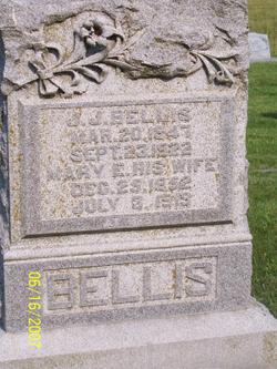"""Mary E """"Polly"""" <I>Tarwater</I> Bellis"""