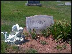 Oscar Bush