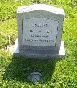 Useless Dunfee