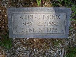 Alice <I>Johnson</I> Biddix