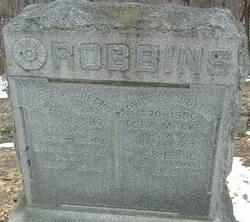 Albert W. Robbins