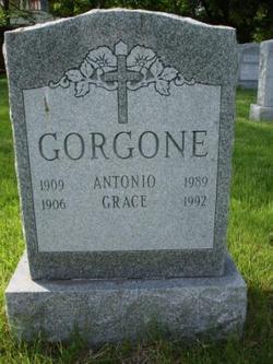 Grace <I>LaCava</I> Gorgone