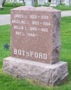 Willis T. Botsford