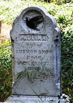 Paulina <I>Fink</I> Snow