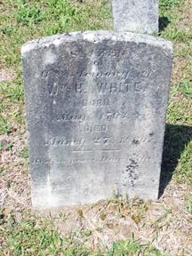 William Hamilton White