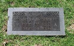 David Washington Trammell
