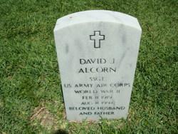 David J Alcorn
