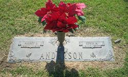 Audrey L Anderson
