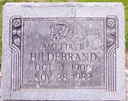 Amelia B <I>Numrich</I> Hildebrand