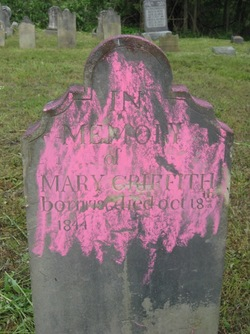 Mary Griffith
