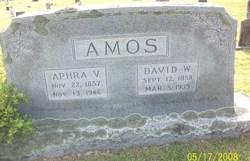 Aphra Vianna <I>Earp</I> Amos