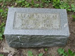 Sarah Florence <I>Davison</I> Lucas