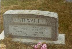 David Eslie Stewart