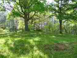 McJunkin Cemetery