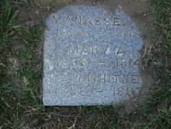 William White Whitney