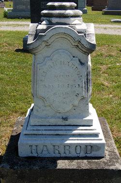 Elijah Harrod