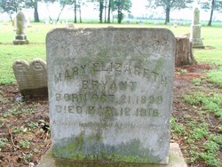 Mary Elizabeth <I>Martin</I> Bryant