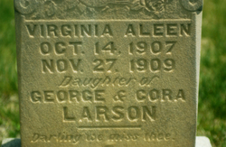 Virginia Aleen Larson