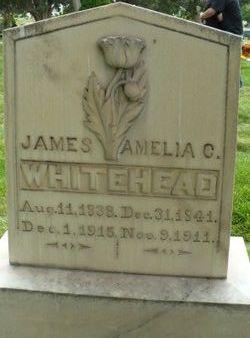 James Boyden Whitehead