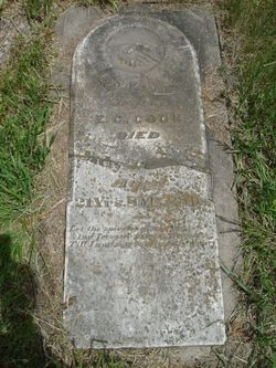 Eliza Elizabeth <I>O'Daniel</I> Cook