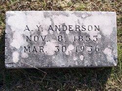 Ambrose Y. Anderson