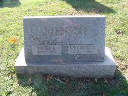 Catherine R Johnson