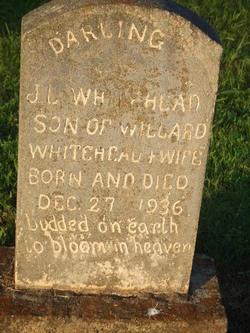 J L Whitehead