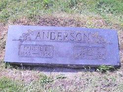 Fannie Edith <I>Whitney</I> Anderson