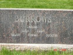 Carl B Burrows