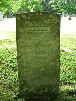 Abigail <I>Lawrence</I> Shepardson