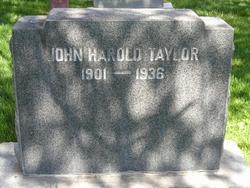 John Harold Taylor