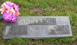 Chester E. Anderson
