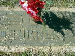 Charles H Turner