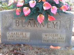 Charlie Lee Blakney