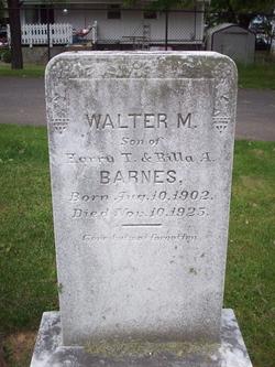 Walter M Barnes