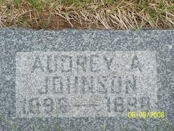 Audrey Ann Johnson
