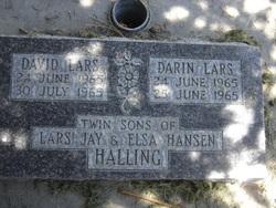 Darin Lars Halling