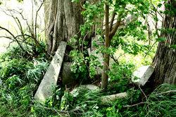 Castle Grove Baptist Cemetery
