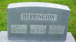Lillie Herrington