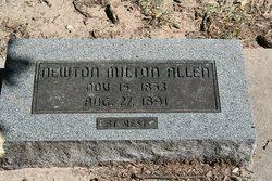 Newton Milton Allen