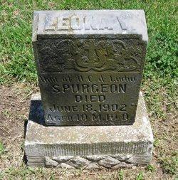 Leona V. Spurgeon