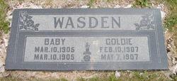 Baby Wasden