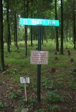 Saint Mary's Cemetery #02