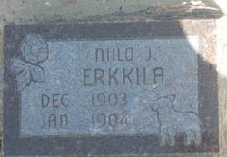Niilo J Erkkila