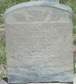 William M Moseley