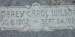 Ambrey Carol Wilson